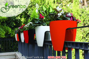 COMBO 10 - CHẬU CẢNH TREO LAN CAN GREENBO GARDEN IN HOME